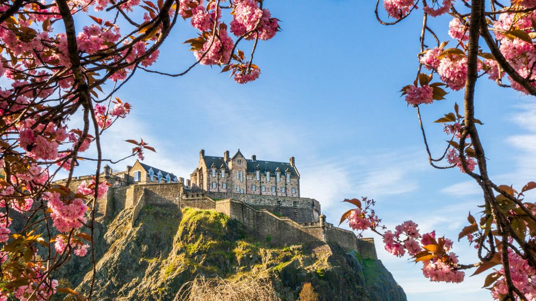Edinburgh Castle Edinburgh in Spring Cherry Blossom Blue Sky Edinburgh Guide