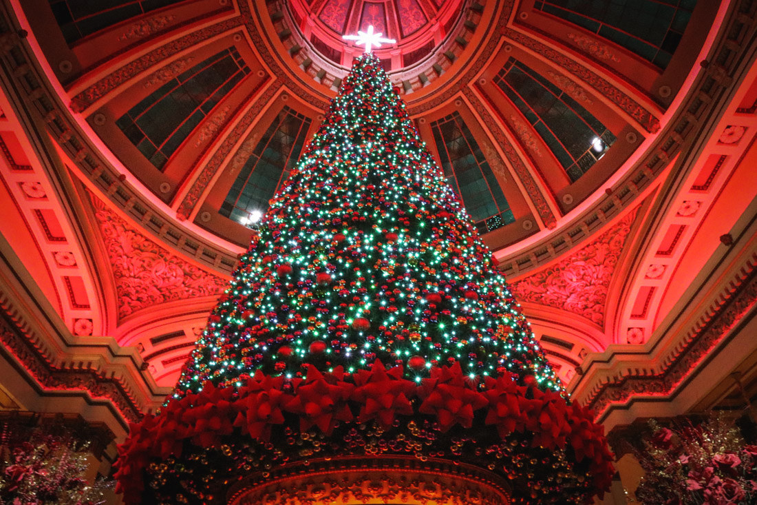 The Dome Christmas George Street_