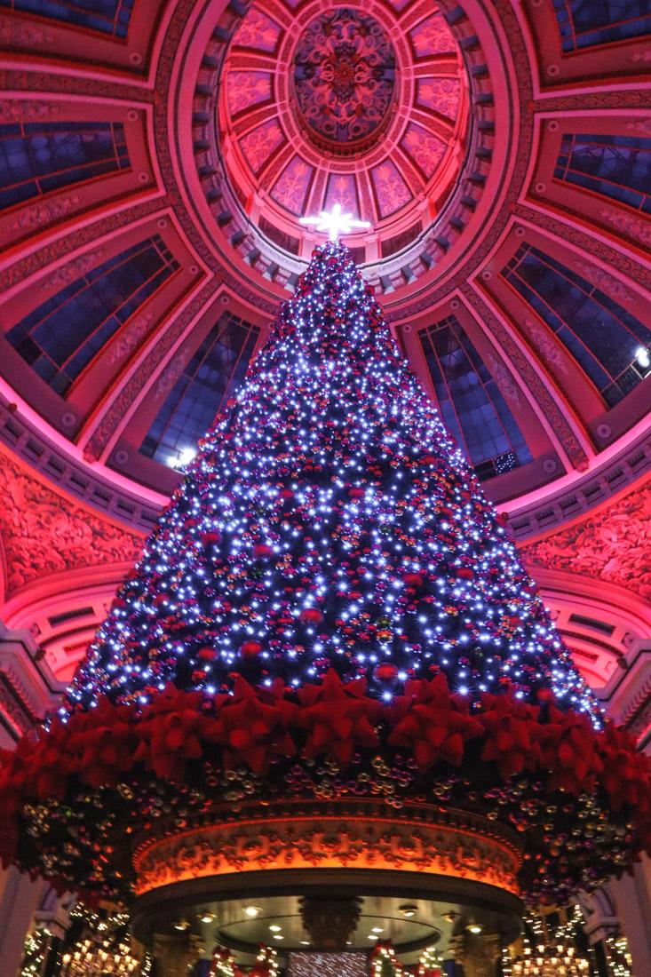 The Dome Christmas Winter Edinburgh George Street_