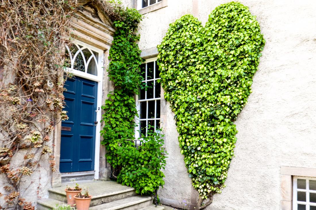 Chessels Court Ivy Heart Royal Mile Edinburgh