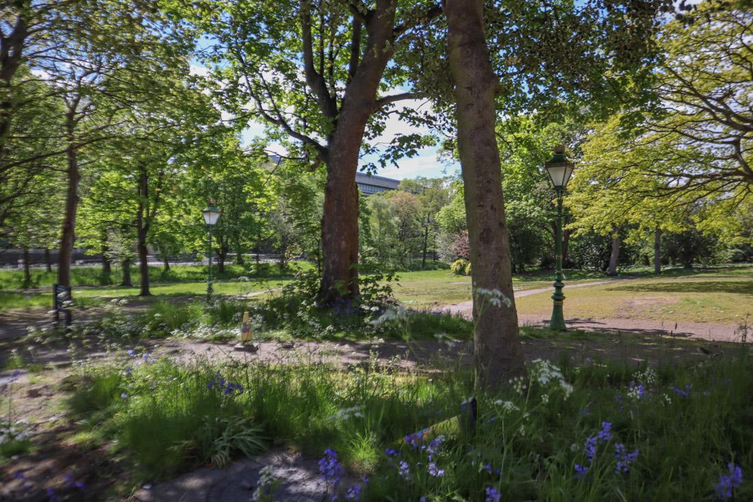 George Square Gardens Nature Park Edinburgh