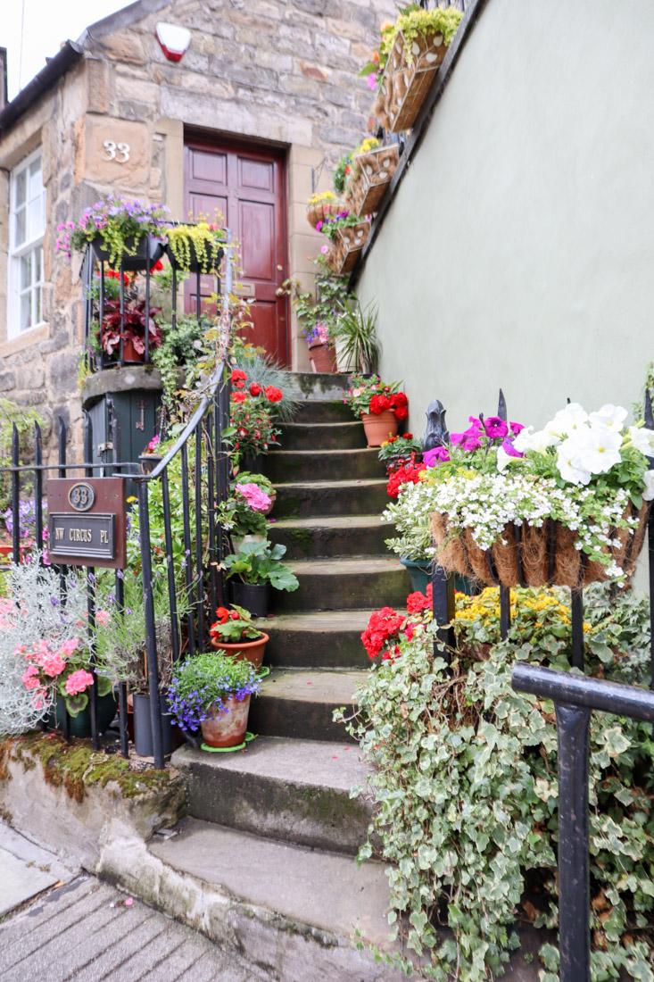 The Potted Garden Stockbridge Edinburgh Scotland