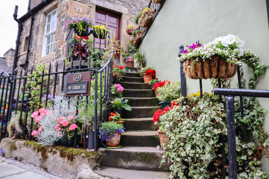The Potted Garden Stockbridge Edinburgh_
