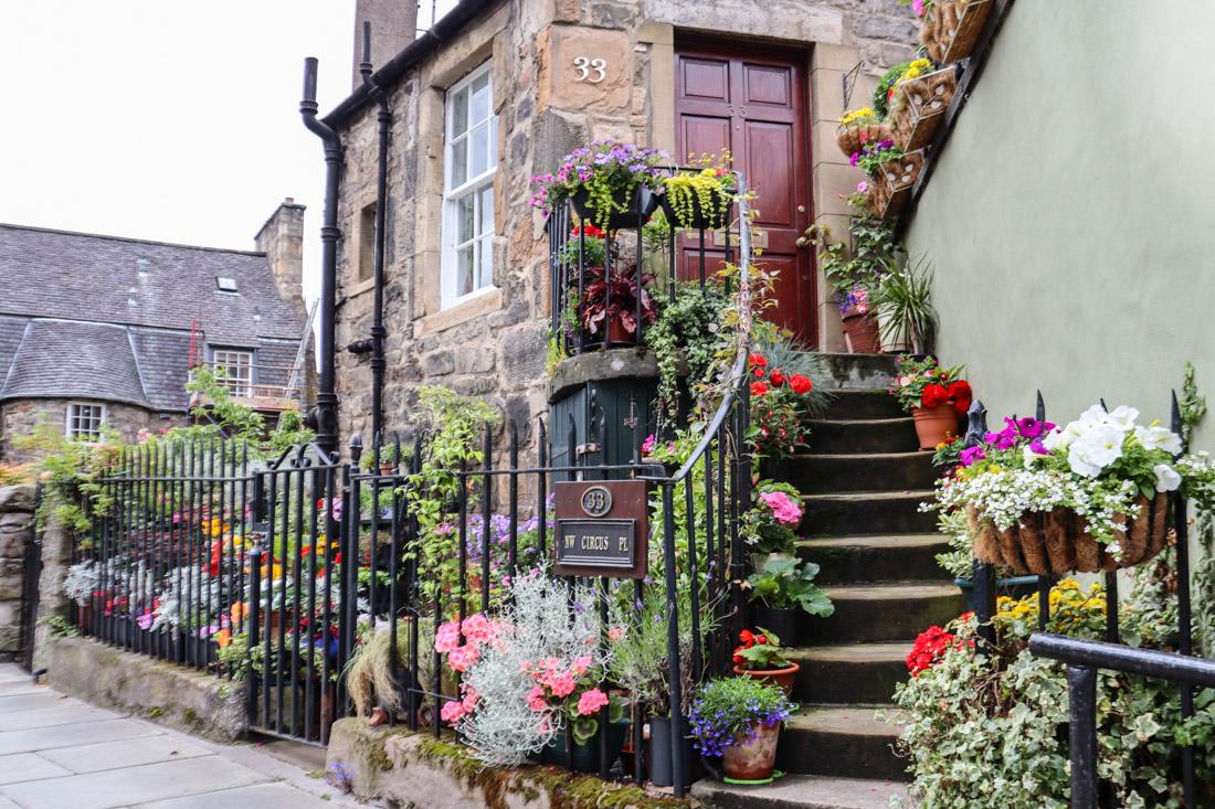 The Potted Garden Stockbridge in Edinburgh_