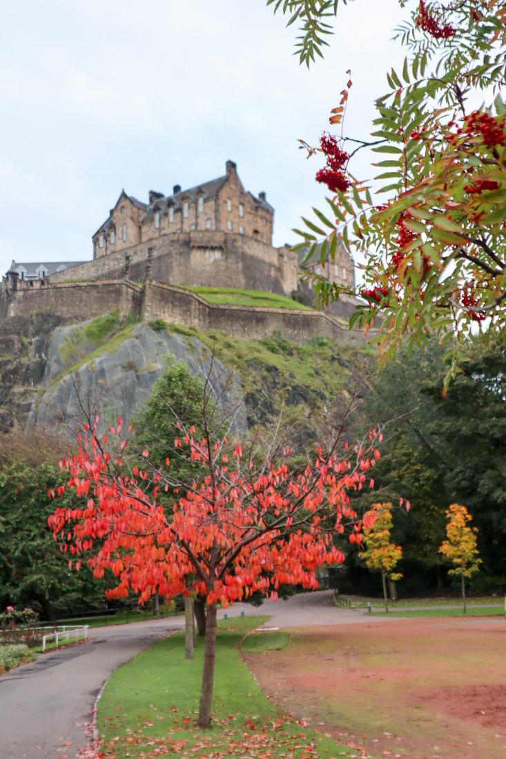 Edinburgh Castle Autumn Red Tree