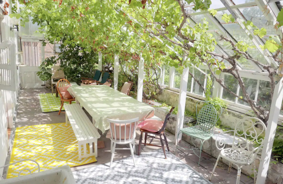 Sunny conservatory with indoor trees and vines in Edinburgh
