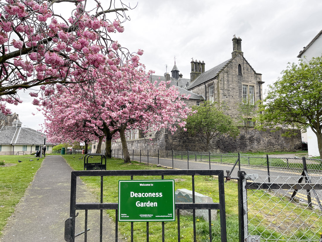 Deaconess Gardens gate sign and park with pink cherry blossom tree